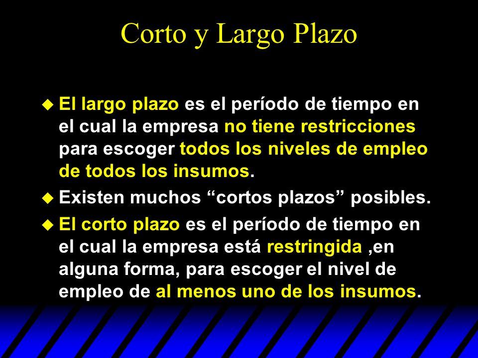 Corto y Largo Plazo El largo plazo es el período de tiempo en el cual la empresa no tiene restricciones para escoger todos los niveles de empleo de to