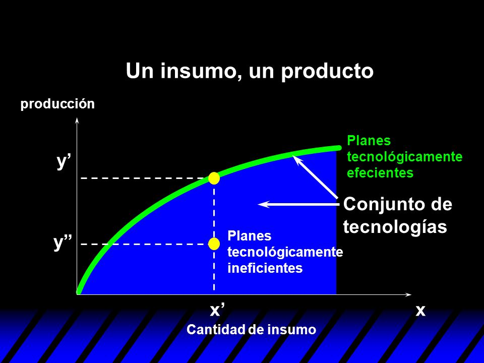 xx y y Planes tecnológicamente ineficientes Planes tecnológicamente efecientes Conjunto de tecnologías Cantidad de insumo producción Un insumo, un pro
