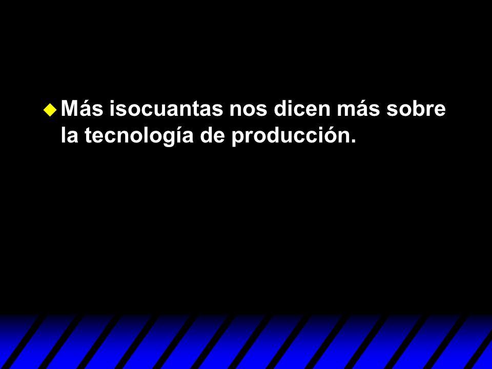 Más isocuantas nos dicen más sobre la tecnología de producción.