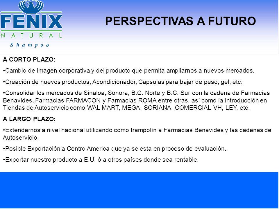 PERSPECTIVAS A FUTURO A CORTO PLAZO: Cambio de imagen corporativa y del producto que permita ampliarnos a nuevos mercados. Creación de nuevos producto