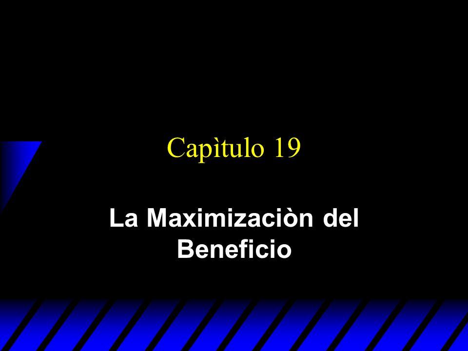 Capìtulo 19 La Maximizaciòn del Beneficio