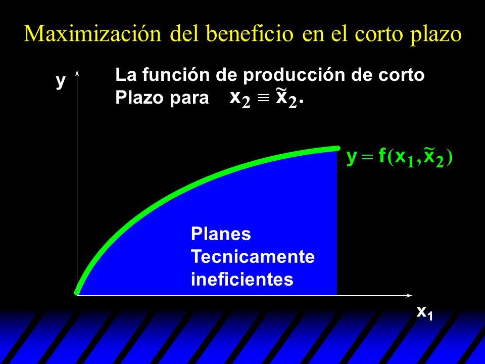 x1x1 Planes Tecnicamente ineficientes y La función de producción de corto Plazo para Maximización del beneficio en el corto plazo