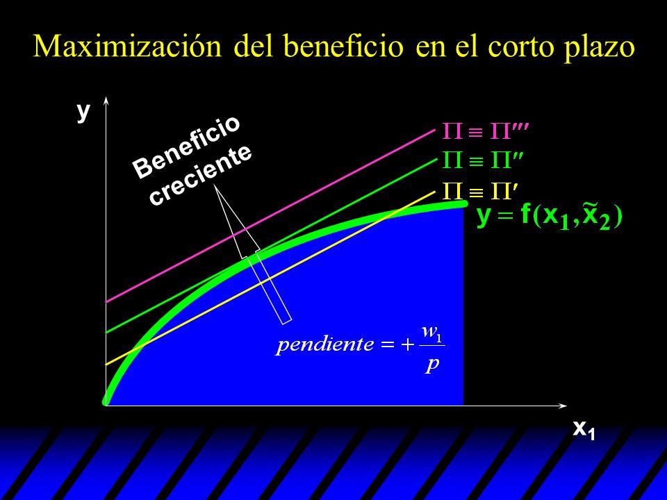 x1x1 Beneficio creciente y Maximización del beneficio en el corto plazo