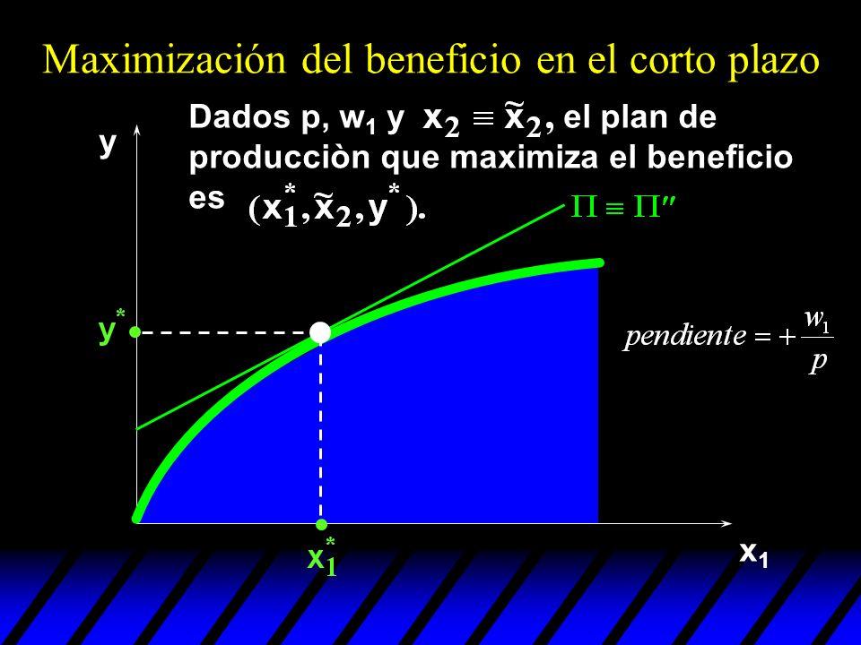 x1x1 y Dados p, w 1 y el plan de producciòn que maximiza el beneficio es Maximización del beneficio en el corto plazo