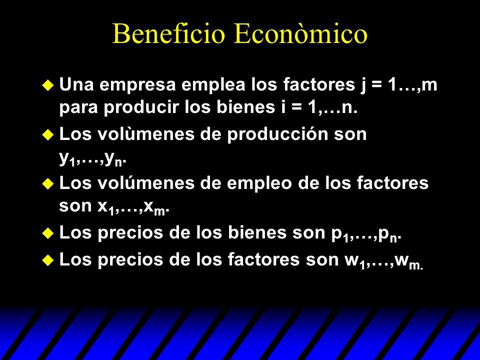 Beneficio Econòmico u Una empresa emplea los factores j = 1…,m para producir los bienes i = 1,…n. u Los volùmenes de producción son y 1,…,y n. u Los v