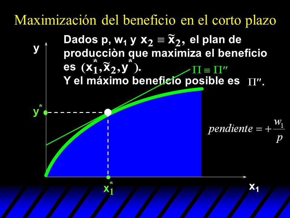 x1x1 y Y el máximo beneficio posible es Maximización del beneficio en el corto plazo Dados p, w 1 y el plan de producciòn que maximiza el beneficio es