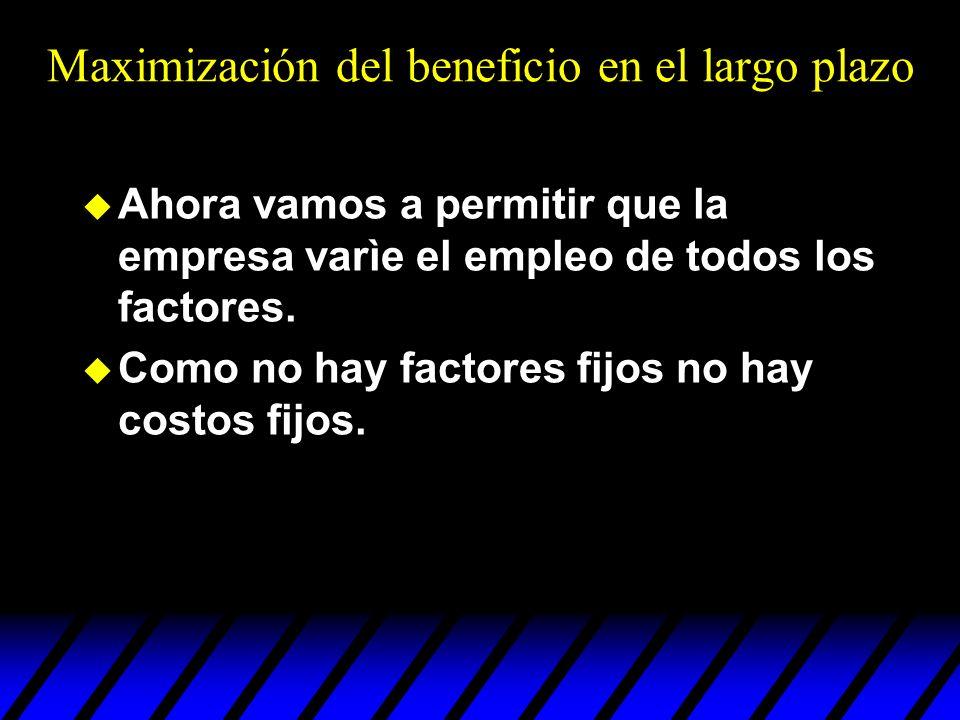 Maximización del beneficio en el largo plazo u Ahora vamos a permitir que la empresa varìe el empleo de todos los factores. u Como no hay factores fij