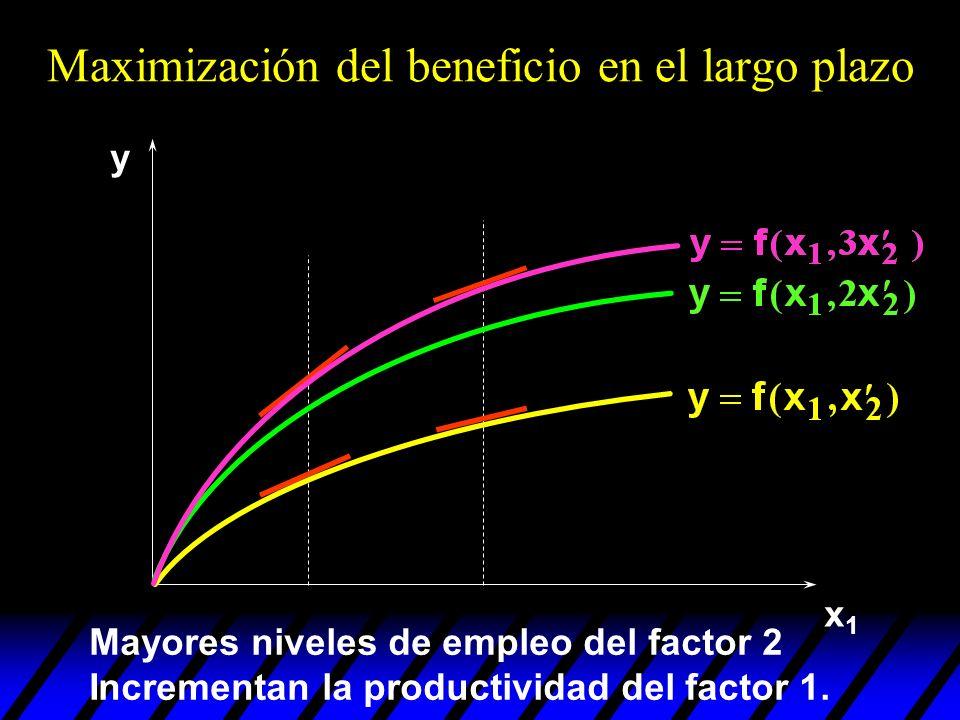 x1x1 y Mayores niveles de empleo del factor 2 Incrementan la productividad del factor 1. Maximización del beneficio en el largo plazo