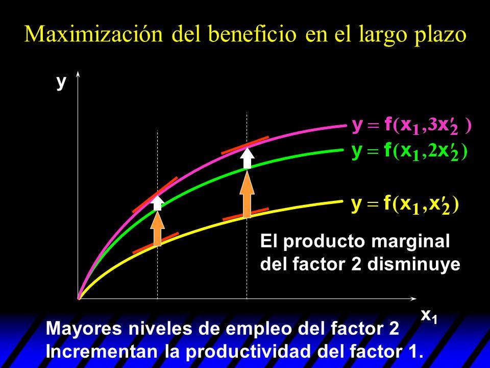 x1x1 y El producto marginal del factor 2 disminuye Maximización del beneficio en el largo plazo Mayores niveles de empleo del factor 2 Incrementan la