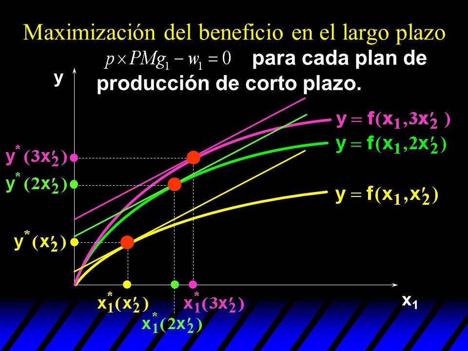 x1x1 y para cada plan de producción de corto plazo. Maximización del beneficio en el largo plazo