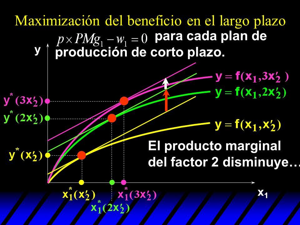 x1x1 y Maximización del beneficio en el largo plazo El producto marginal del factor 2 disminuye… para cada plan de producción de corto plazo.