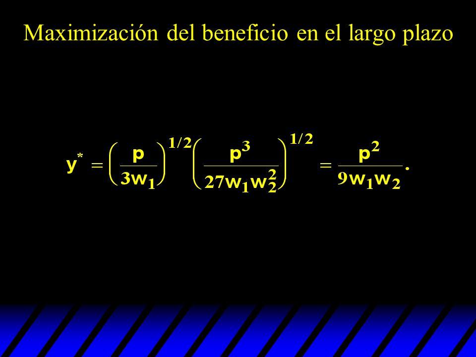 Así, dados los precios p, w 1 y w 2, y la función de producción El plan de producción que maximiza el beneficio es Maximización del beneficio en el largo plazo