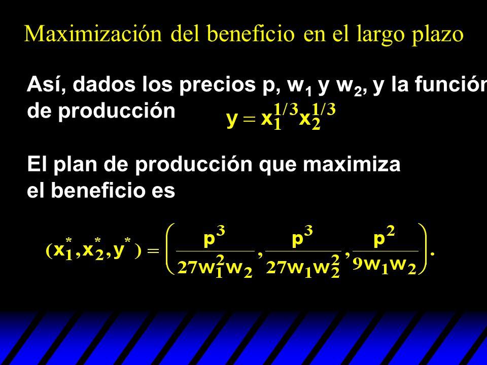 Así, dados los precios p, w 1 y w 2, y la función de producción El plan de producción que maximiza el beneficio es Maximización del beneficio en el la