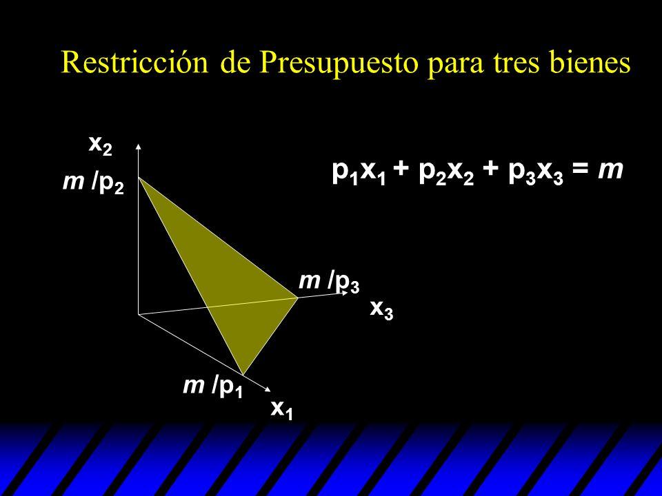Restricción de Presupuesto para tres bienes x2x2 x1x1 x3x3 m /p 2 m /p 1 m /p 3 p 1 x 1 + p 2 x 2 + p 3 x 3 = m