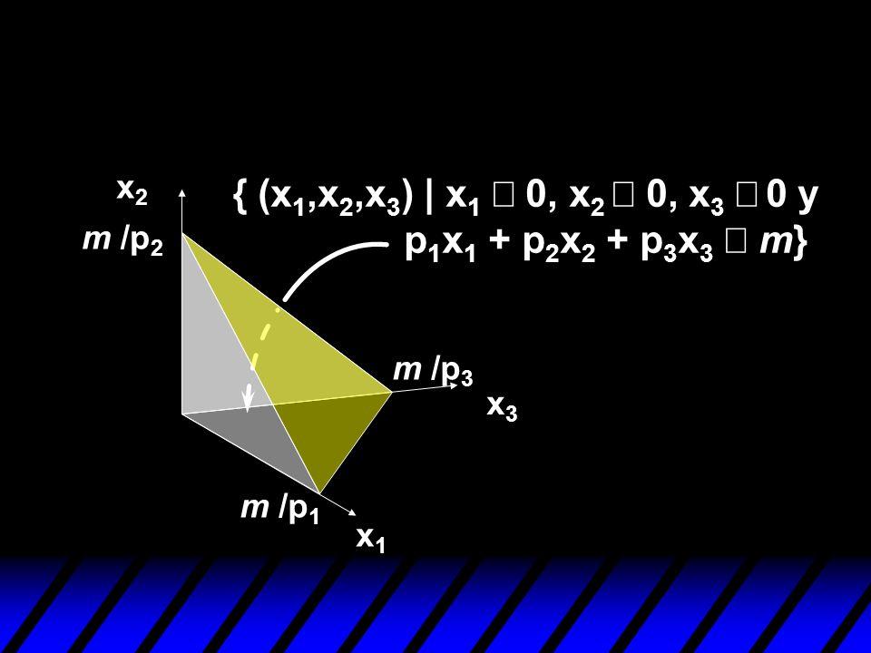 x2x2 x1x1 x3x3 m /p 2 m /p 1 m /p 3 { (x 1,x 2,x 3 ) | x 1 0, x 2 0, x 3 0 y p 1 x 1 + p 2 x 2 + p 3 x 3 m}