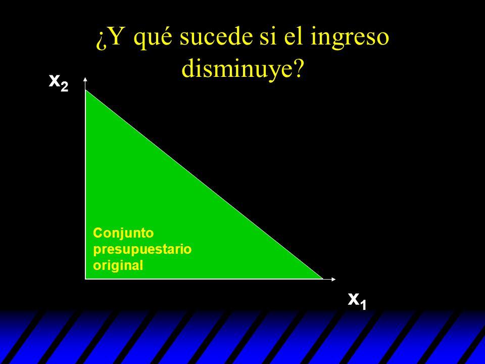 ¿Y qué sucede si el ingreso disminuye? x2x2 x1x1 Conjunto presupuestario original