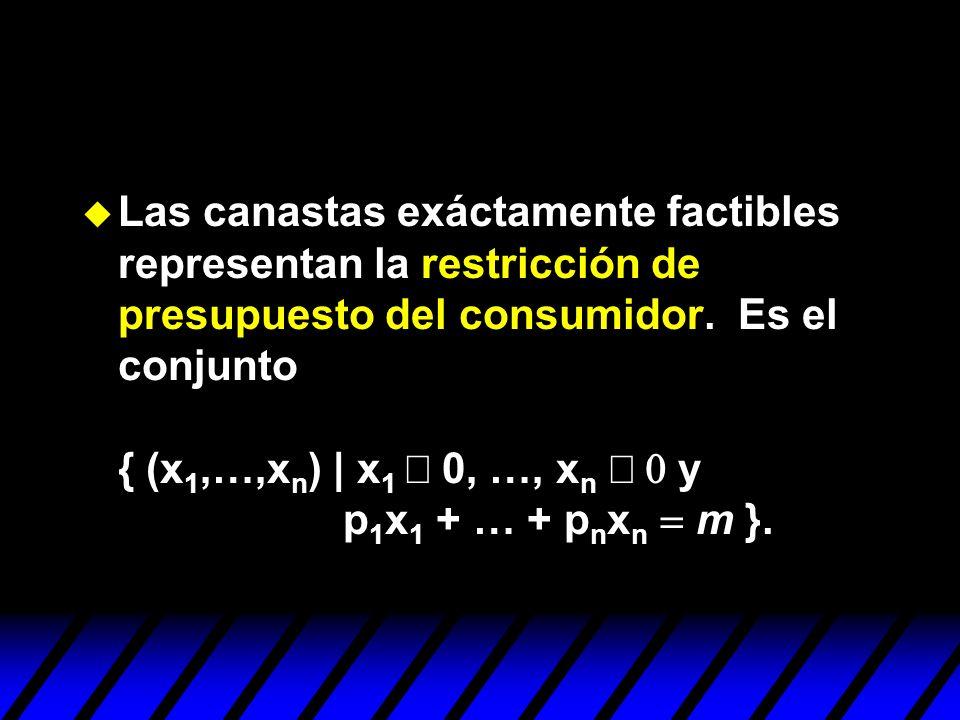 Las canastas exáctamente factibles representan la restricción de presupuesto del consumidor. Es el conjunto { (x 1,…,x n ) | x 1 0, …, x n y p 1 x 1 +