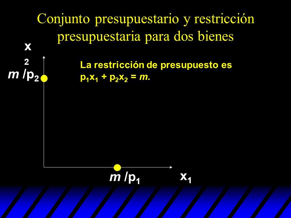 Conjunto presupuestario y restricción presupuestaria para dos bienes x2x2 x1x1 La restricción de presupuesto es p 1 x 1 + p 2 x 2 = m. m /p 1 m /p 2