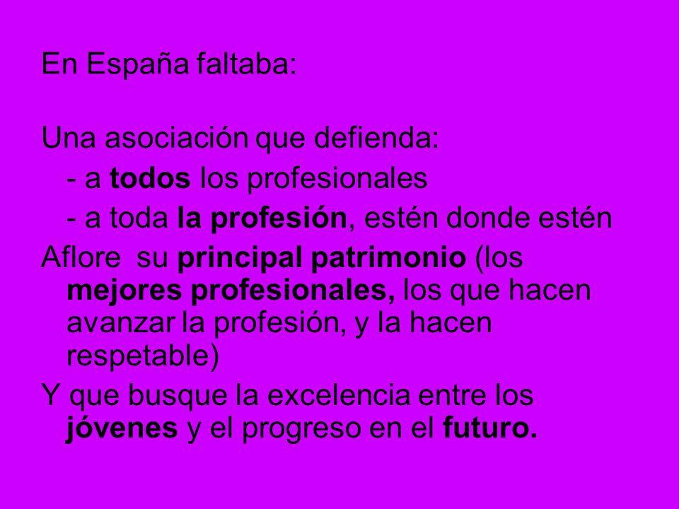 En España faltaba: Una asociación que defienda: - a todos los profesionales - a toda la profesión, estén donde estén Aflore su principal patrimonio (los mejores profesionales, los que hacen avanzar la profesión, y la hacen respetable) Y que busque la excelencia entre los jóvenes y el progreso en el futuro.