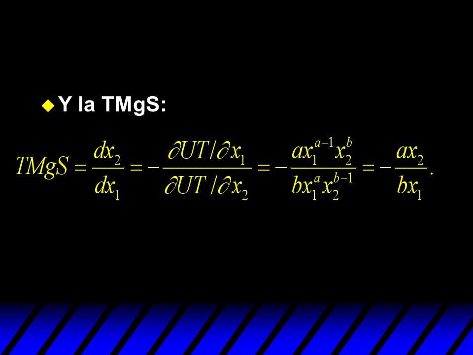u Y la TMgS: