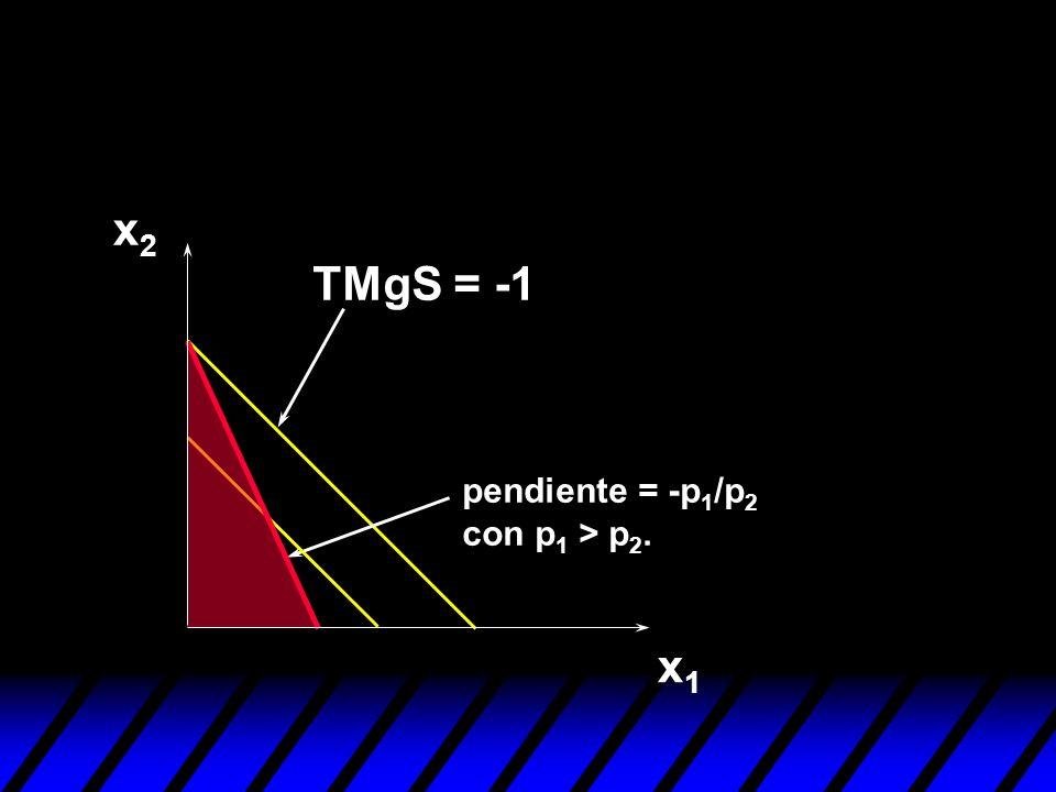 x1x1 x2x2 pendiente = -p 1 /p 2 con p 1 > p 2. TMgS = -1