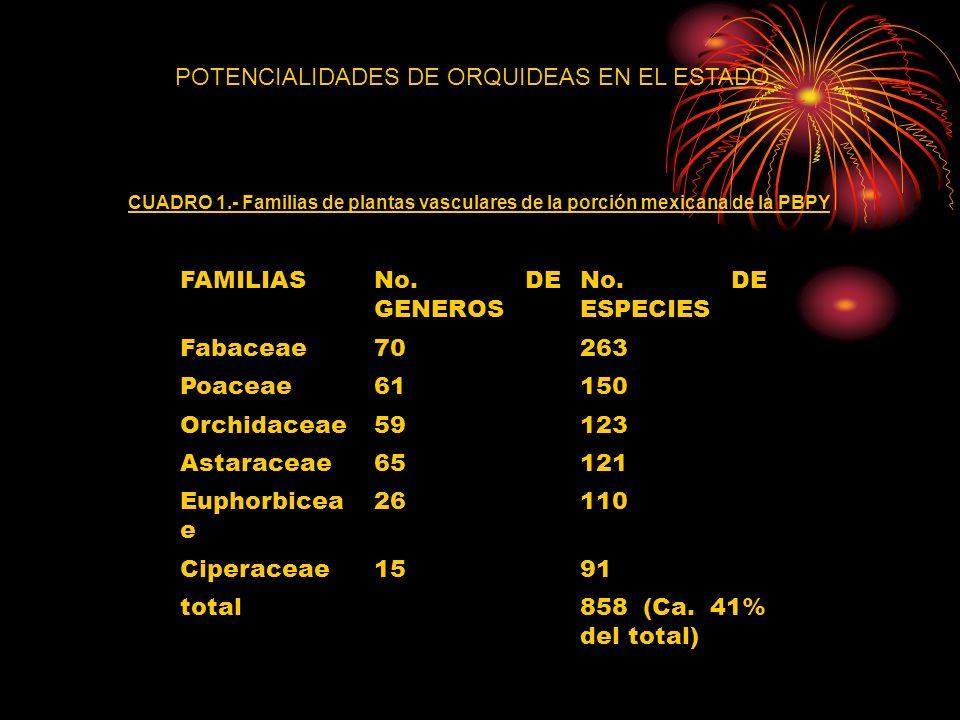 CUADRO 1.- Familias de plantas vasculares de la porción mexicana de la PBPY FAMILIASNo. DE GENEROS No. DE ESPECIES Fabaceae70263 Poaceae61150 Orchidac