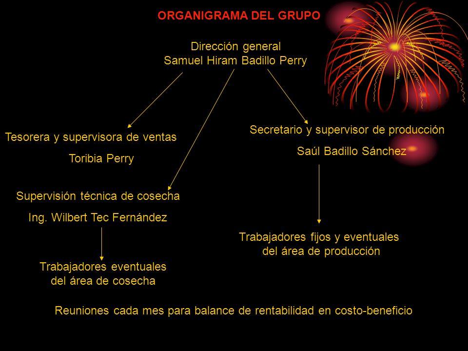 Dirección general Samuel Hiram Badillo Perry Tesorera y supervisora de ventas Toribia Perry Secretario y supervisor de producción Saúl Badillo Sánchez