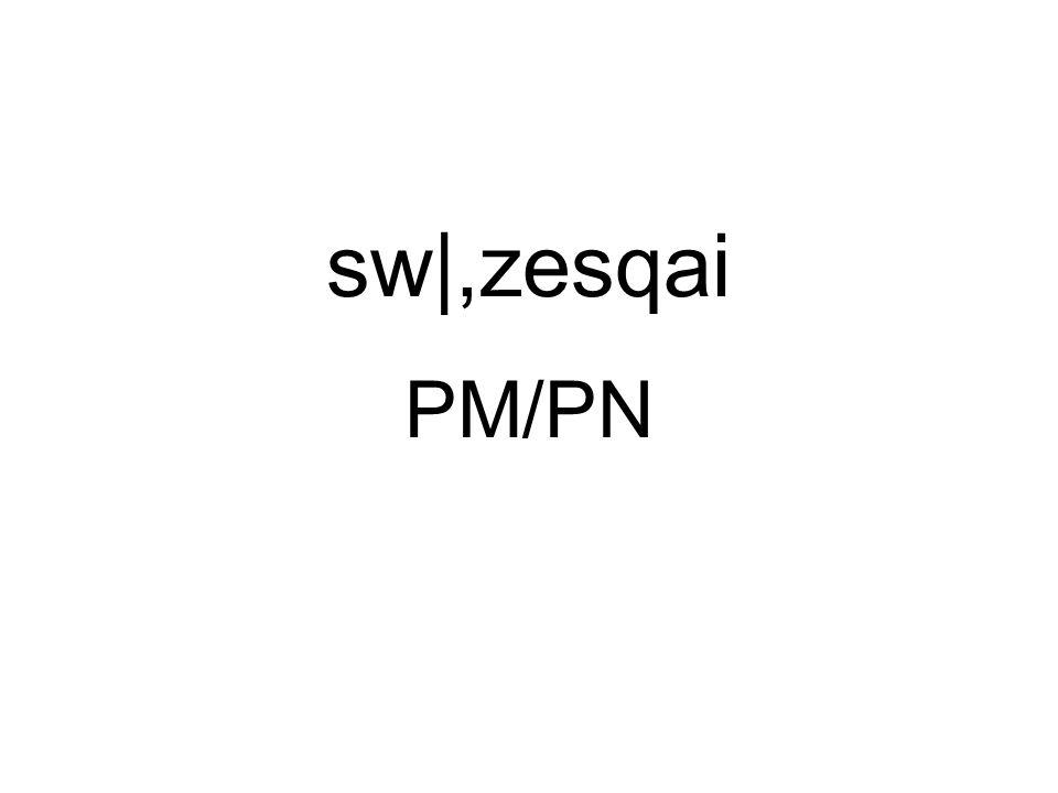 PM/PN sw|,zesqai