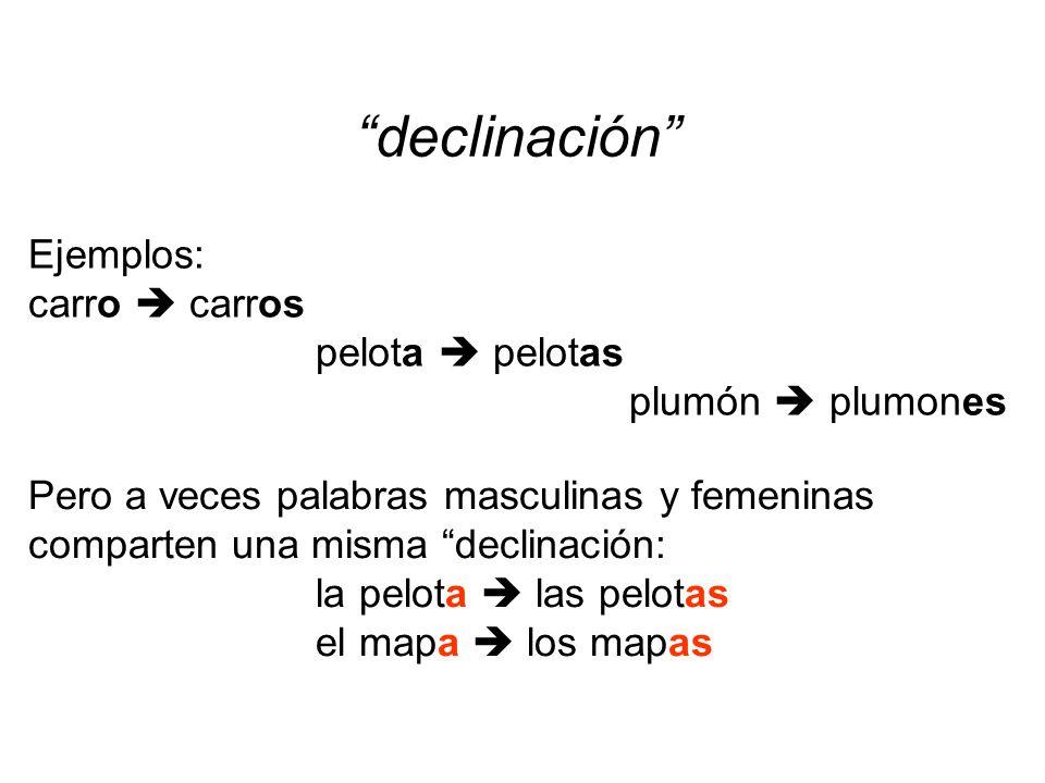 declinación Ejemplos: carro carros pelota pelotas plumón plumones Pero a veces palabras masculinas y femeninas comparten una misma declinación: la pel