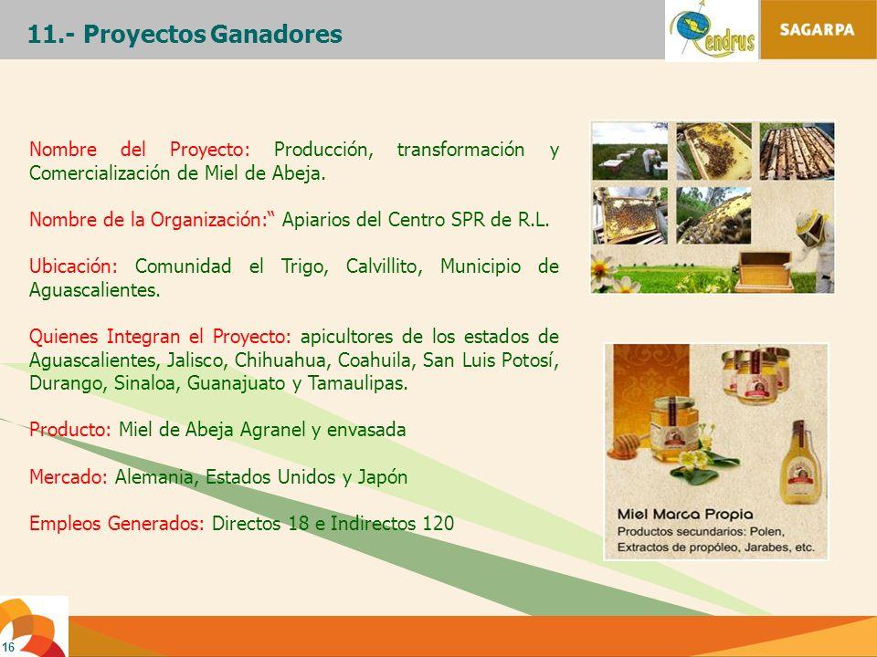 16 11.- Proyectos Ganadores Nombre del Proyecto: Producción, transformación y Comercialización de Miel de Abeja. Nombre de la Organización: Apiarios d