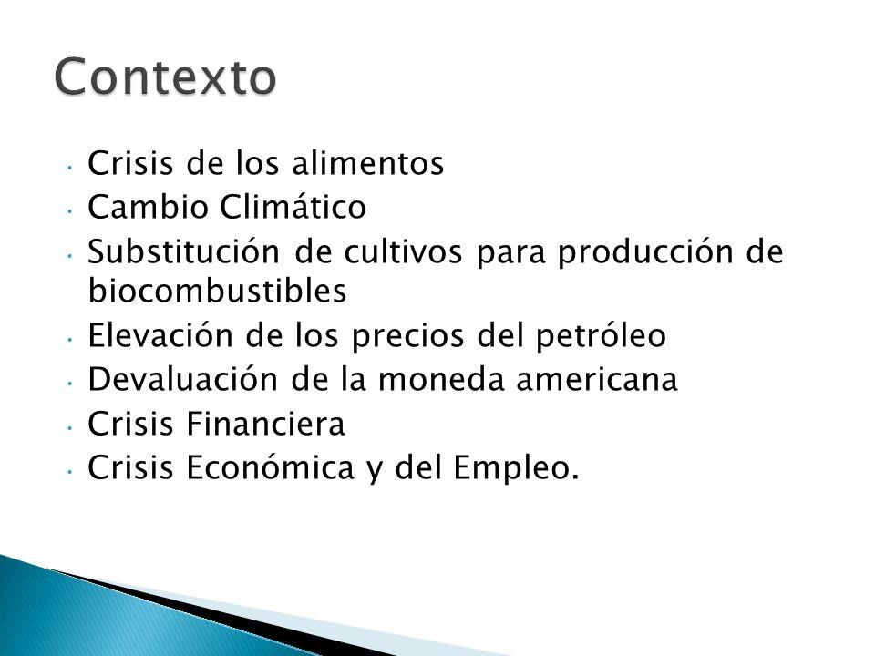 Crisis de los alimentos Cambio Climático Substitución de cultivos para producción de biocombustibles Elevación de los precios del petróleo Devaluación de la moneda americana Crisis Financiera Crisis Económica y del Empleo.