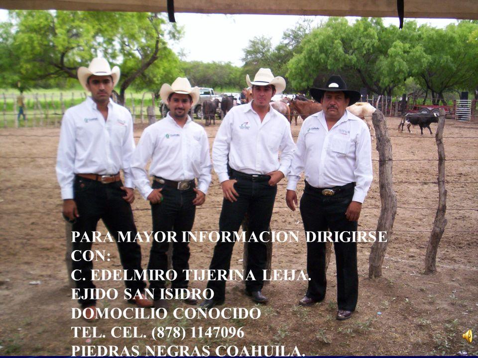 PARA MAYOR INFORMACION DIRIGIRSE CON: C. EDELMIRO TIJERINA LEIJA. EJIDO SAN ISIDRO DOMOCILIO CONOCIDO TEL. CEL. (878) 1147096 PIEDRAS NEGRAS COAHUILA.