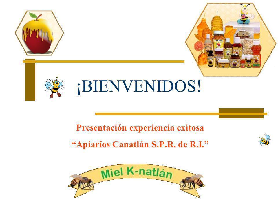 ¡BIENVENIDOS! Presentación experiencia exitosa Apiaríos Canatlán S.P.R. de R.I.