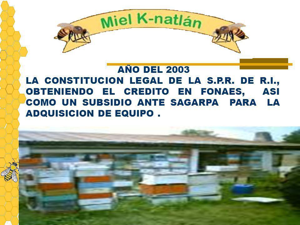 AÑO DEL 2003 LA CONSTITUCION LEGAL DE LA S.P.R. DE R.I., OBTENIENDO EL CREDITO EN FONAES, ASI COMO UN SUBSIDIO ANTE SAGARPA PARA LA ADQUISICION DE EQU