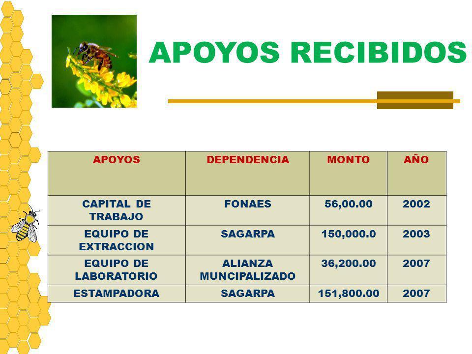 APOYOSDEPENDENCIAMONTOAÑO CAPITAL DE TRABAJO FONAES56,00.002002 EQUIPO DE EXTRACCION SAGARPA150,000.02003 EQUIPO DE LABORATORIO ALIANZA MUNCIPALIZADO
