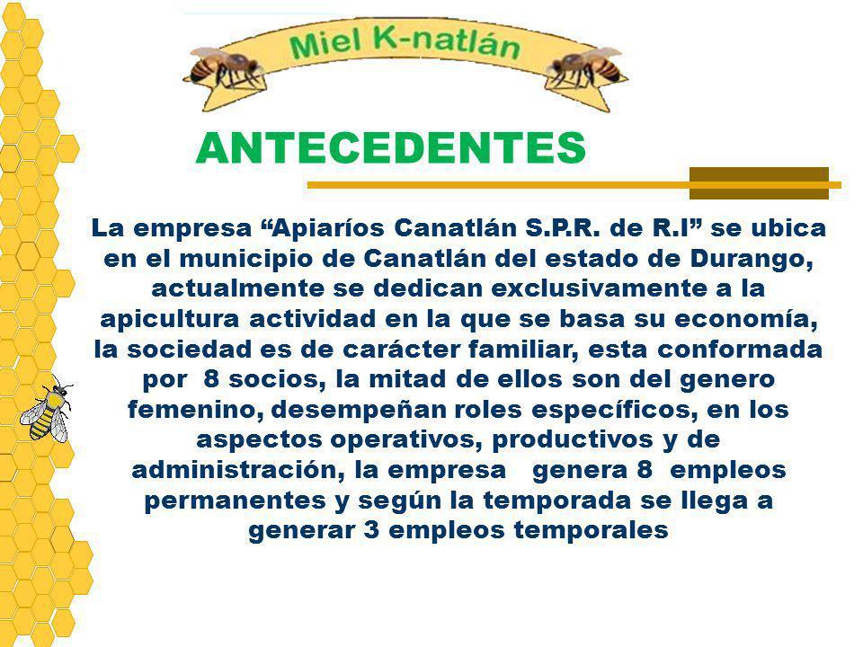 ANTECEDENTES La empresa Apiaríos Canatlán S.P.R. de R.I se ubica en el municipio de Canatlán del estado de Durango, actualmente se dedican exclusivame