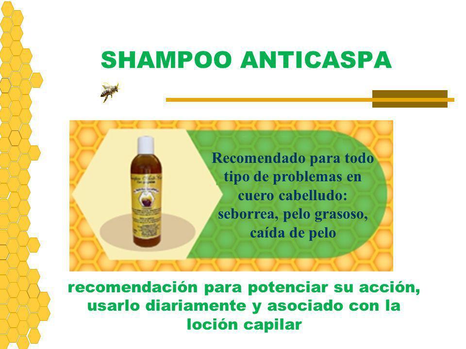SHAMPOO ANTICASPA Recomendado para todo tipo de problemas en cuero cabelludo: seborrea, pelo grasoso, caída de pelo recomendación para potenciar su ac
