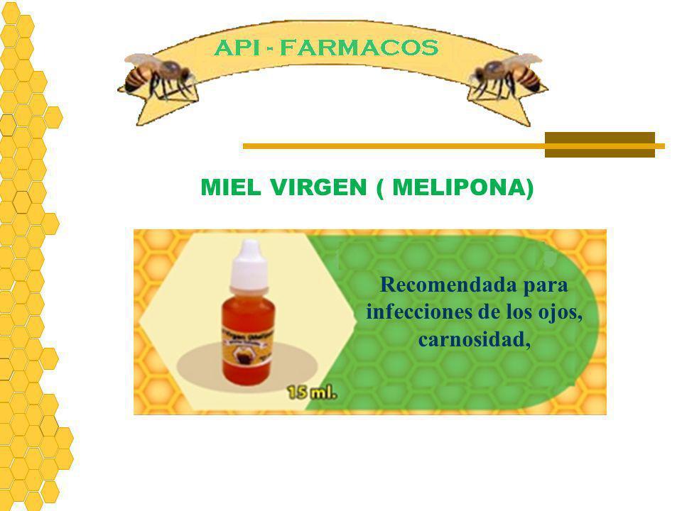 Recomendada para infecciones de los ojos, carnosidad, MIEL VIRGEN ( MELIPONA)