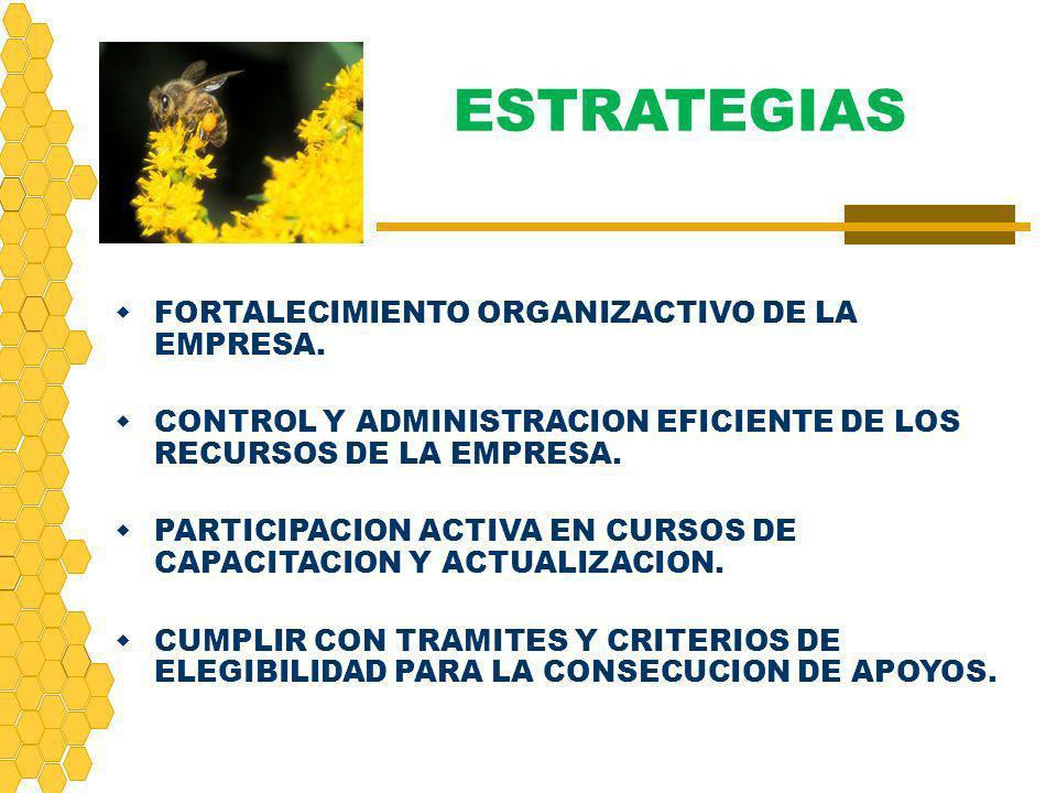 FORTALECIMIENTO ORGANIZACTIVO DE LA EMPRESA. CONTROL Y ADMINISTRACION EFICIENTE DE LOS RECURSOS DE LA EMPRESA. PARTICIPACION ACTIVA EN CURSOS DE CAPAC