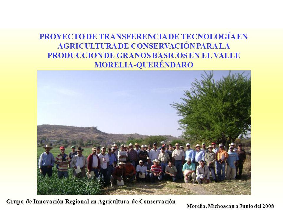 PROYECTO DE TRANSFERENCIA DE TECNOLOGÍA EN AGRICULTURA DE CONSERVACIÓN PARA LA PRODUCCION DE GRANOS BASICOS EN EL VALLE MORELIA-QUERÉNDARO Grupo de In