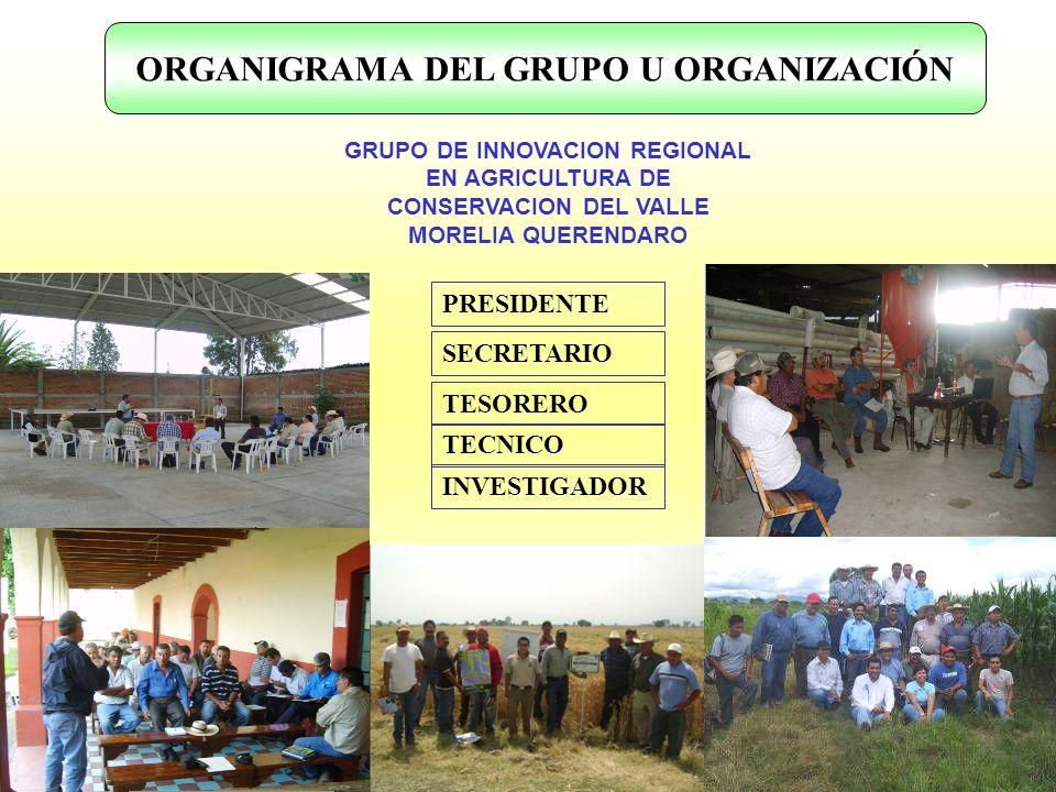 ORGANIGRAMA DEL GRUPO U ORGANIZACIÓN GRUPO DE INNOVACION REGIONAL EN AGRICULTURA DE CONSERVACION DEL VALLE MORELIA QUERENDARO TESORERO PRESIDENTE SECR