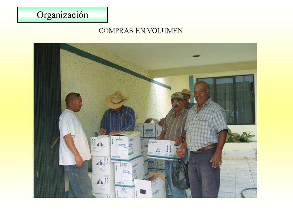 COMPRAS EN VOLUMEN Organización
