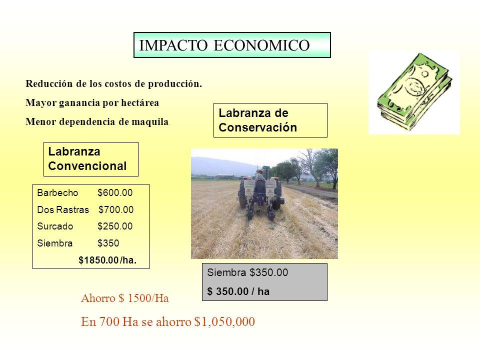IMPACTO ECONOMICO Reducción de los costos de producción. Mayor ganancia por hectárea Menor dependencia de maquila Barbecho $600.00 Dos Rastras $700.00