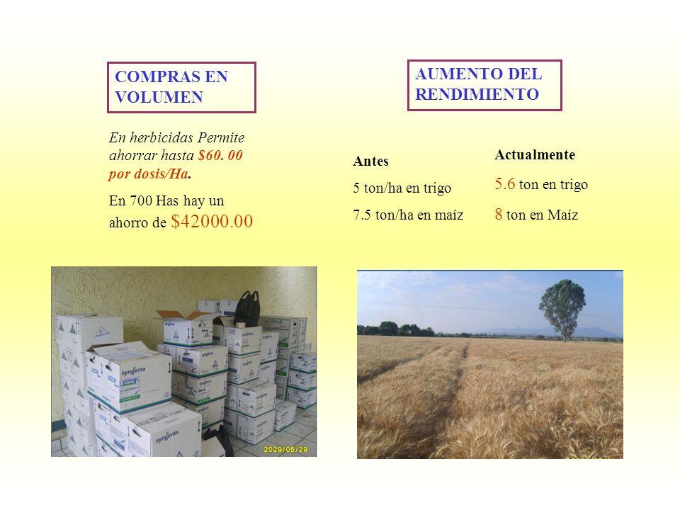 En herbicidas Permite ahorrar hasta $60. 00 por dosis/Ha. En 700 Has hay un ahorro de $42000.00 AUMENTO DEL RENDIMIENTO Antes 5 ton/ha en trigo 7.5 to