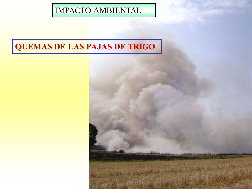 QUEMAS DE LAS PAJAS DE TRIGO IMPACTO AMBIENTAL