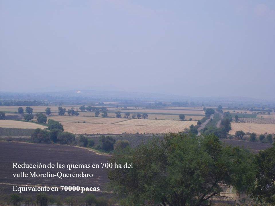 Reducción de las quemas en 700 ha del valle Morelia-Queréndaro Equivalente en 70000 pacas