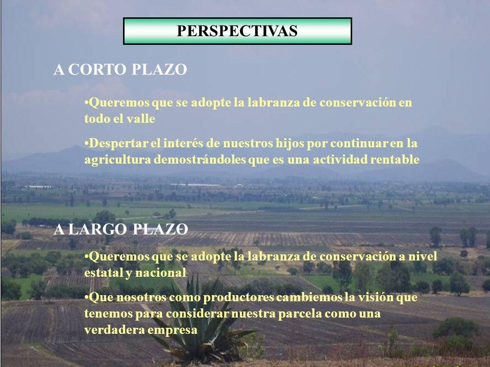 PERSPECTIVAS A CORTO PLAZO Queremos que se adopte la labranza de conservación en todo el valle Despertar el interés de nuestros hijos por continuar en