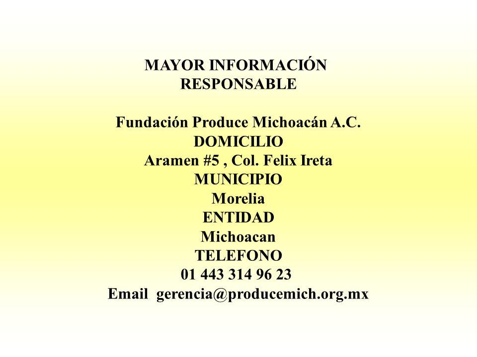 MAYOR INFORMACIÓN RESPONSABLE Fundación Produce Michoacán A.C. DOMICILIO Aramen #5, Col. Felix Ireta MUNICIPIO Morelia ENTIDAD Michoacan TELEFONO 01 4