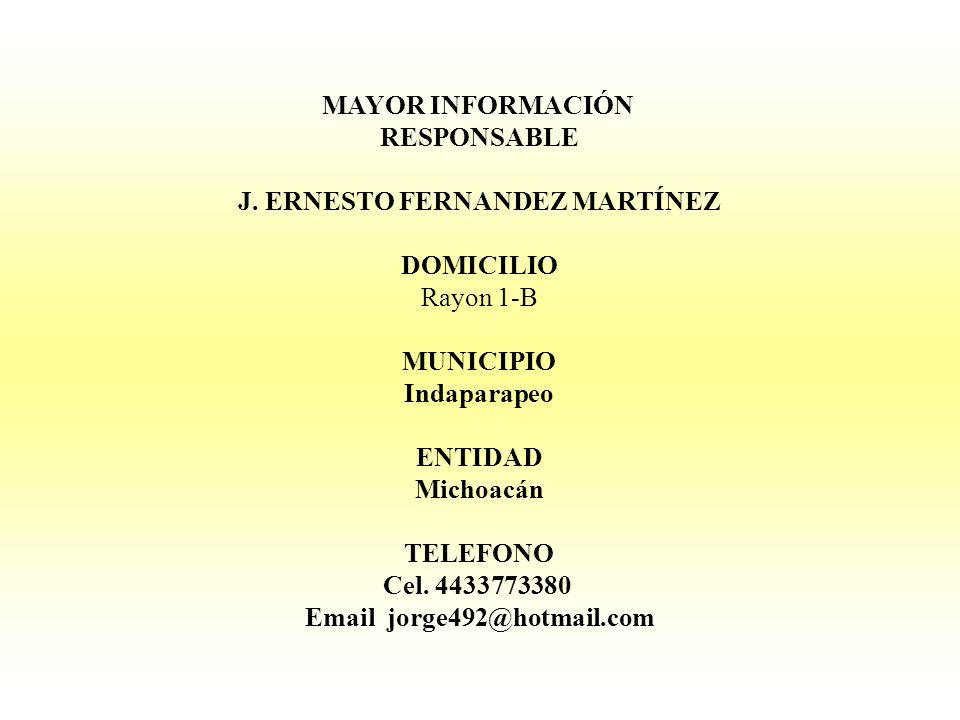 MAYOR INFORMACIÓN RESPONSABLE J. ERNESTO FERNANDEZ MARTÍNEZ DOMICILIO Rayon 1-B MUNICIPIO Indaparapeo ENTIDAD Michoacán TELEFONO Cel. 4433773380 Email