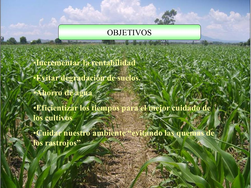 OBJETIVOS Incrementar la rentabilidad Evitar degradación de suelos. Ahorro de agua Eficientizar los tiempos para el mejor cuidado de los cultivos Cuid